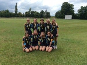 Kwik cricket2